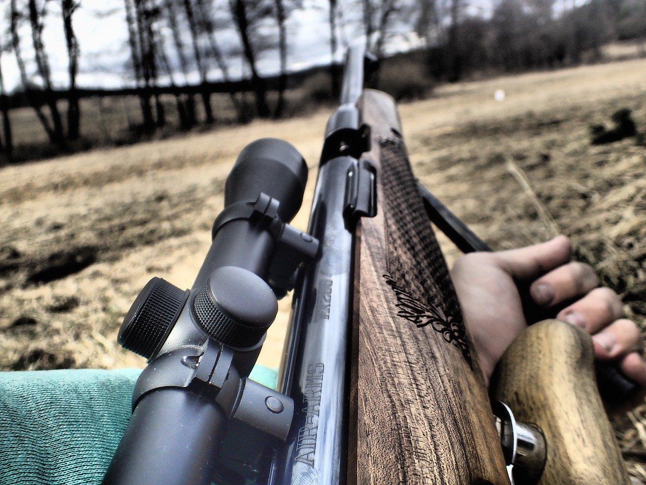 Купить винтовку для охоты